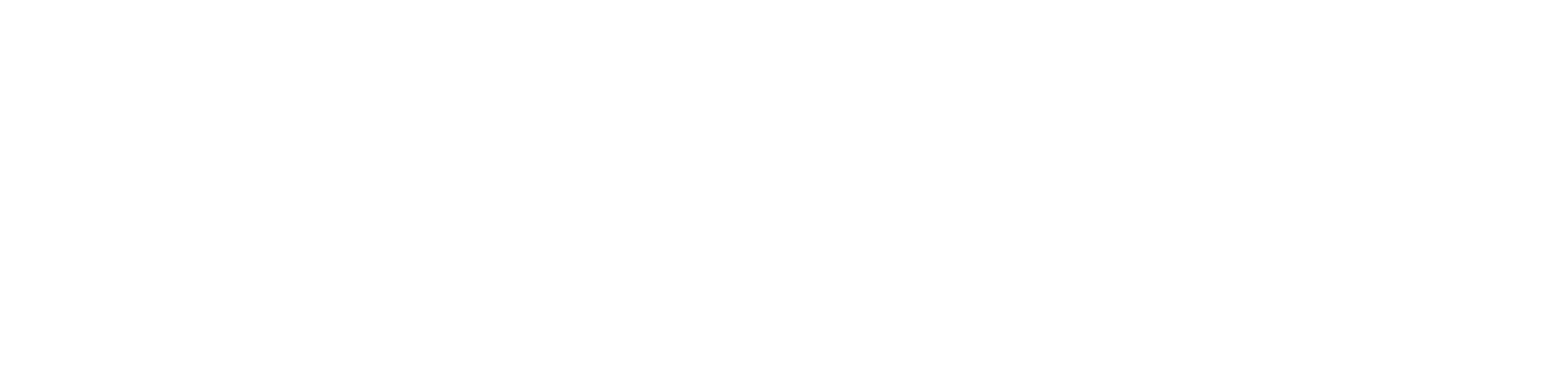 Lotus Financial Network Advice